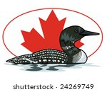 vector illustration of a loon...