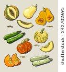 hand drawn illustration of... | Shutterstock .eps vector #242702695