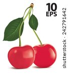 cherry with green leaf isolated.... | Shutterstock .eps vector #242791642