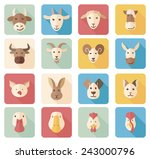 farm animals flat icons with... | Shutterstock .eps vector #243000796