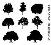 various of vector tree... | Shutterstock .eps vector #243104665