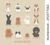 Set Of Asian Dogs   Eps10...