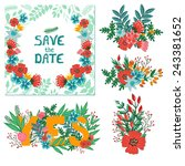 vector set of wedding elements. ... | Shutterstock .eps vector #243381652