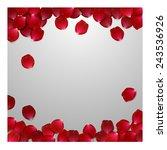 red rose petals . valentine s... | Shutterstock .eps vector #243536926