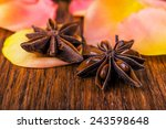 close up pink rose petals and... | Shutterstock . vector #243598648