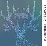 abstract polygonal deer.... | Shutterstock .eps vector #243629716