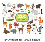 vector zoo animals. many... | Shutterstock .eps vector #243655006