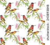 seamless pattern with wild... | Shutterstock . vector #243893848