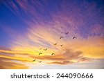 colorful clouds | Shutterstock . vector #244090666