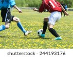 football soccer | Shutterstock . vector #244193176