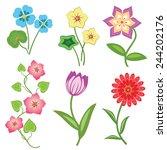 flower set on white background. ... | Shutterstock . vector #244202176