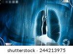 digital illustration of human... | Shutterstock . vector #244213975