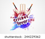 colorful splash with cricket... | Shutterstock .eps vector #244229362