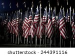 2974 American Flags...