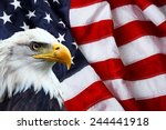 north american bald eagle on... | Shutterstock . vector #244441918