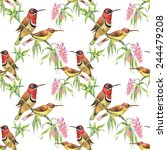 seamless pattern with wild... | Shutterstock .eps vector #244479208