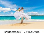 happy bride and groom having... | Shutterstock . vector #244660906