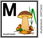 vector illustration of mushroom ...   Shutterstock .eps vector #24471622
