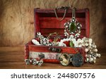 a collection of vintage jewelry ... | Shutterstock . vector #244807576
