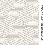 vector seamless pattern. modern ... | Shutterstock .eps vector #244867228