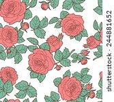 roses . seamless pattern 3.... | Shutterstock .eps vector #244881652