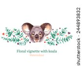watercolor vignette with koala  ... | Shutterstock .eps vector #244893832