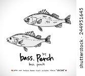 hand drawn fish   vector... | Shutterstock .eps vector #244951645