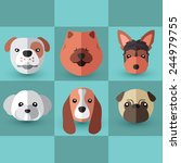 dog breeds  | Shutterstock .eps vector #244979755