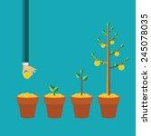 vector money tree growth... | Shutterstock .eps vector #245078035
