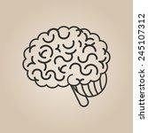 brain illustration | Shutterstock .eps vector #245107312