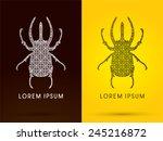stage beetle  big horn ...   Shutterstock .eps vector #245216872