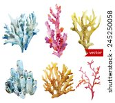 watercolor  corals  set  sponge ... | Shutterstock .eps vector #245250058