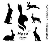 Stock vector hare set vector eps 245300692