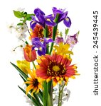 image of many beautiful flowers ... | Shutterstock . vector #245439445