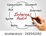 internal audit process circle ... | Shutterstock . vector #245542282