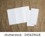 identity design  corporate... | Shutterstock . vector #245629618