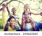 african family happiness...   Shutterstock . vector #245663365