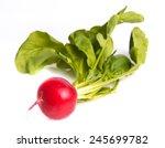 ripe radishes | Shutterstock . vector #245699782