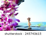 hawaii travel car   hula girl... | Shutterstock . vector #245743615