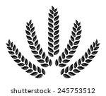 drawn wheat  ears of corn ... | Shutterstock .eps vector #245753512