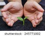 hand carefully nurturing a... | Shutterstock . vector #245771002