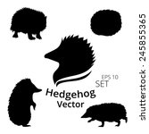 hedgehog set  vector  eps 10 | Shutterstock .eps vector #245855365