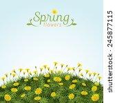 flowers spring field season... | Shutterstock .eps vector #245877115