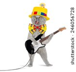 Stock photo funny cat with electric guitar 246056728