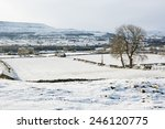 Snow Covered Wensleydale With...