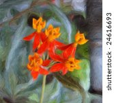 blood flower oil on canvas... | Shutterstock . vector #24616693