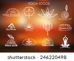 set of logos of yoga and... | Shutterstock .eps vector #246220498