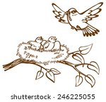 illustration of the bird... | Shutterstock .eps vector #246225055