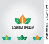 lotus flower abstract vector... | Shutterstock .eps vector #246247495