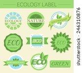 green eco nature label print... | Shutterstock .eps vector #246310876